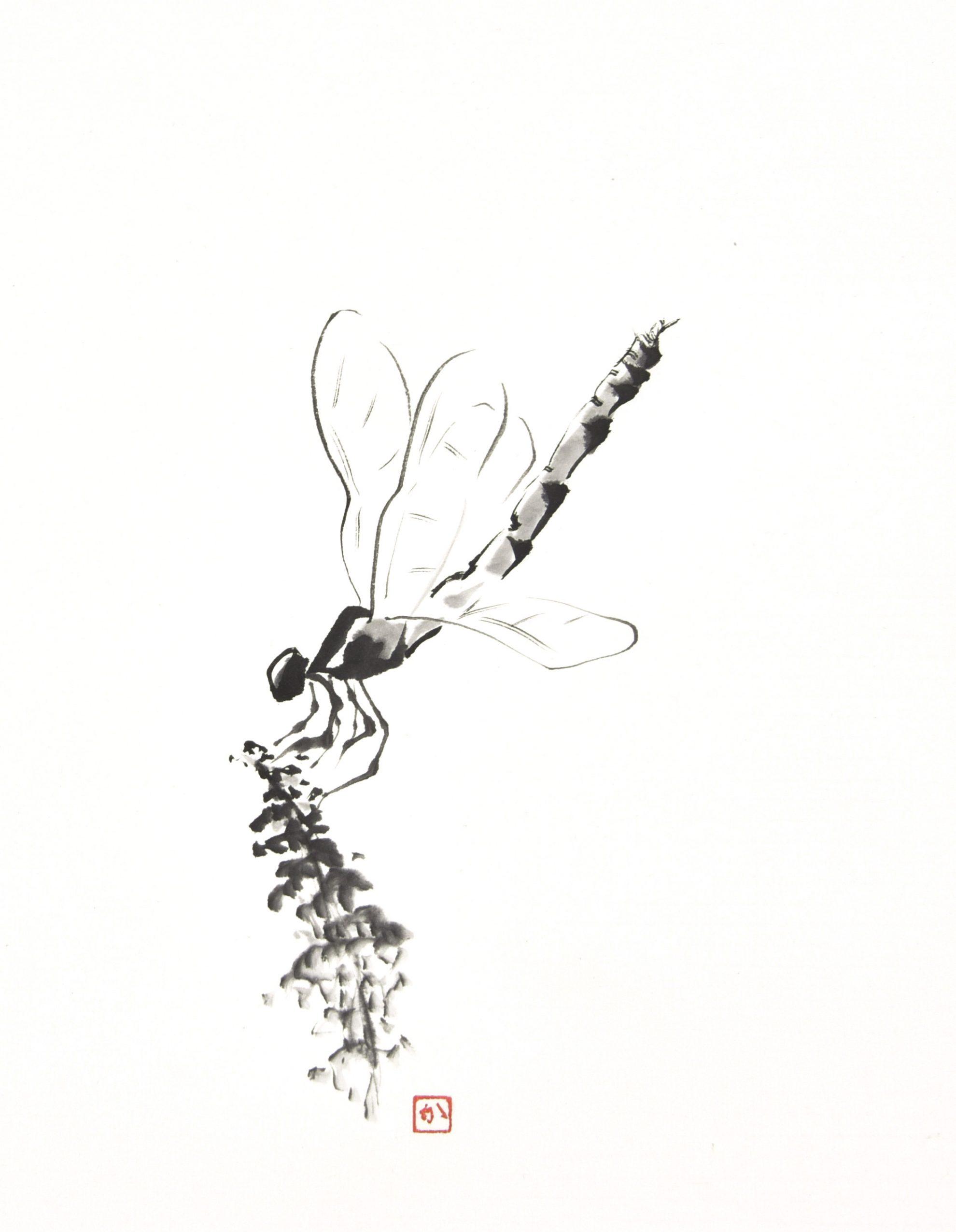 Libelle (31x25 cm)